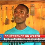 Conferencing on water: Investment in a mangrove hotel