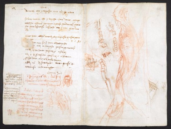 Leonardo da Vinci's epic notebook is now available to view for free https://t.co/XOS0iZZYyq https://t.co/HdQAqktEhS