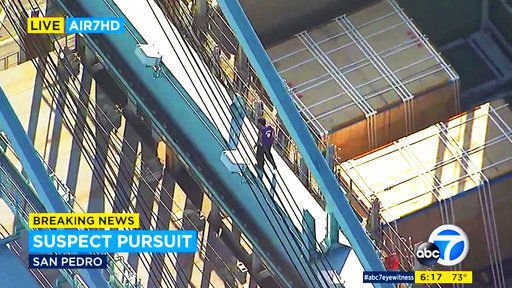 Suspect falls to death from atop crane at Los Angeles port