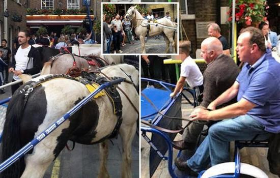 Stunned drinkers watch as 30 travellers stop outside packed London pub, 'demand water for their pooing horses then abuse bar staff'