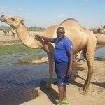 SGR's noise confuses wildlife in Nairobi National Park - Mulee