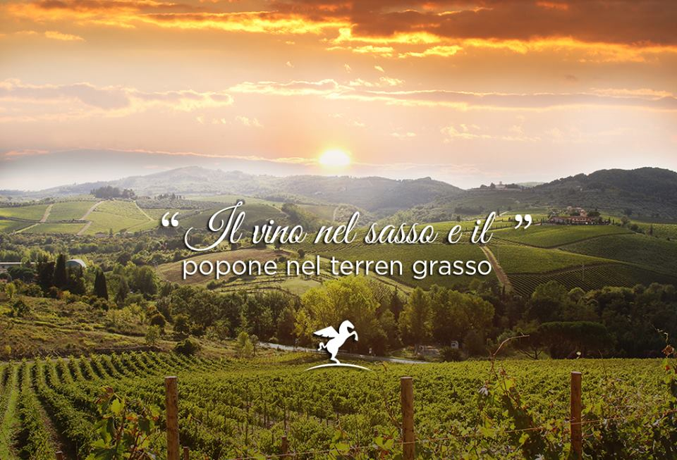 #CercoUnProverbio