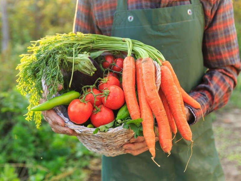Study Links Good Body Odor to Vegetables