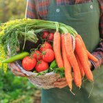 Study Links Good Body Odor to Vegetables