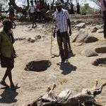 Pokot herders allowed to graze in Baringo North after peace talks