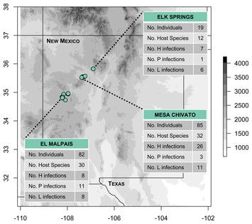 test Twitter Media - Diversity, abundance, and host relationships of avian malaria and related haemosporidians in New Mexico pine forests https://t.co/hI8drI2TeH https://t.co/pocb4plQAh