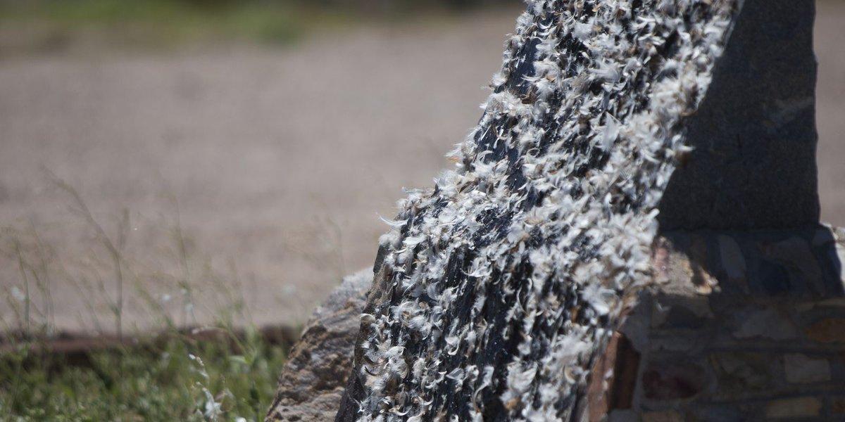Jefferson Davis Highway memorial in Arizona vandalized