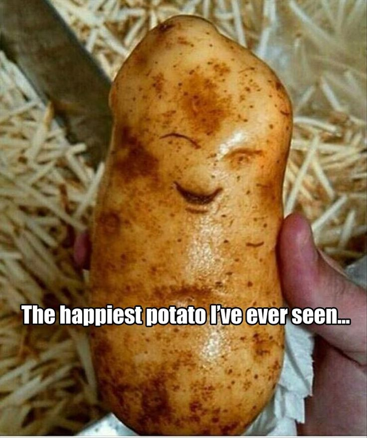 #NationalPotatoDay