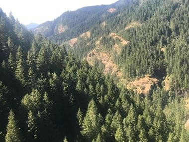 Oregon wildfires update: Sisters battle plan takes shape; 600 told to leave