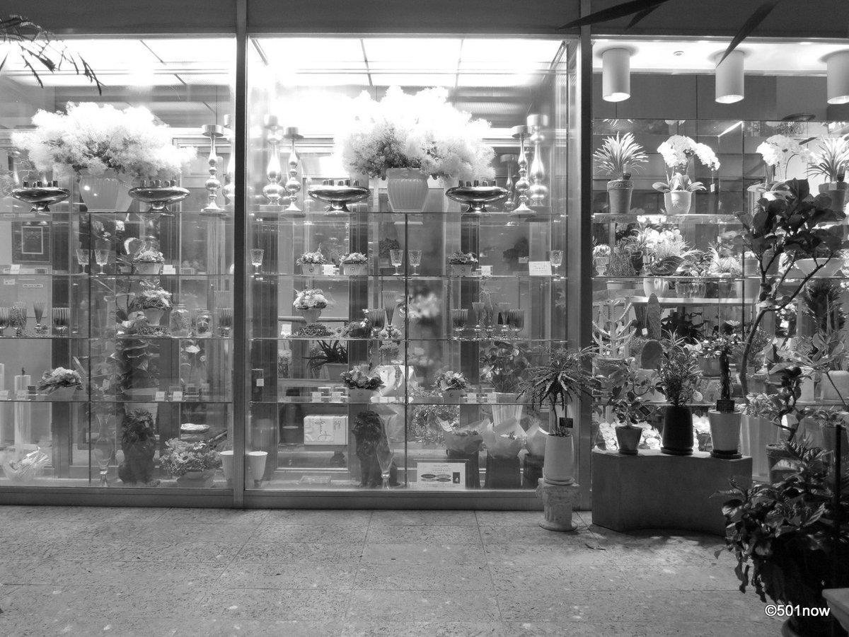 『閉店した花屋 #2』#写真撮ってる人と繋がりたい#写真好きな人と繋がりたい#ファインダー越しの私の世界#写真 #カメラ