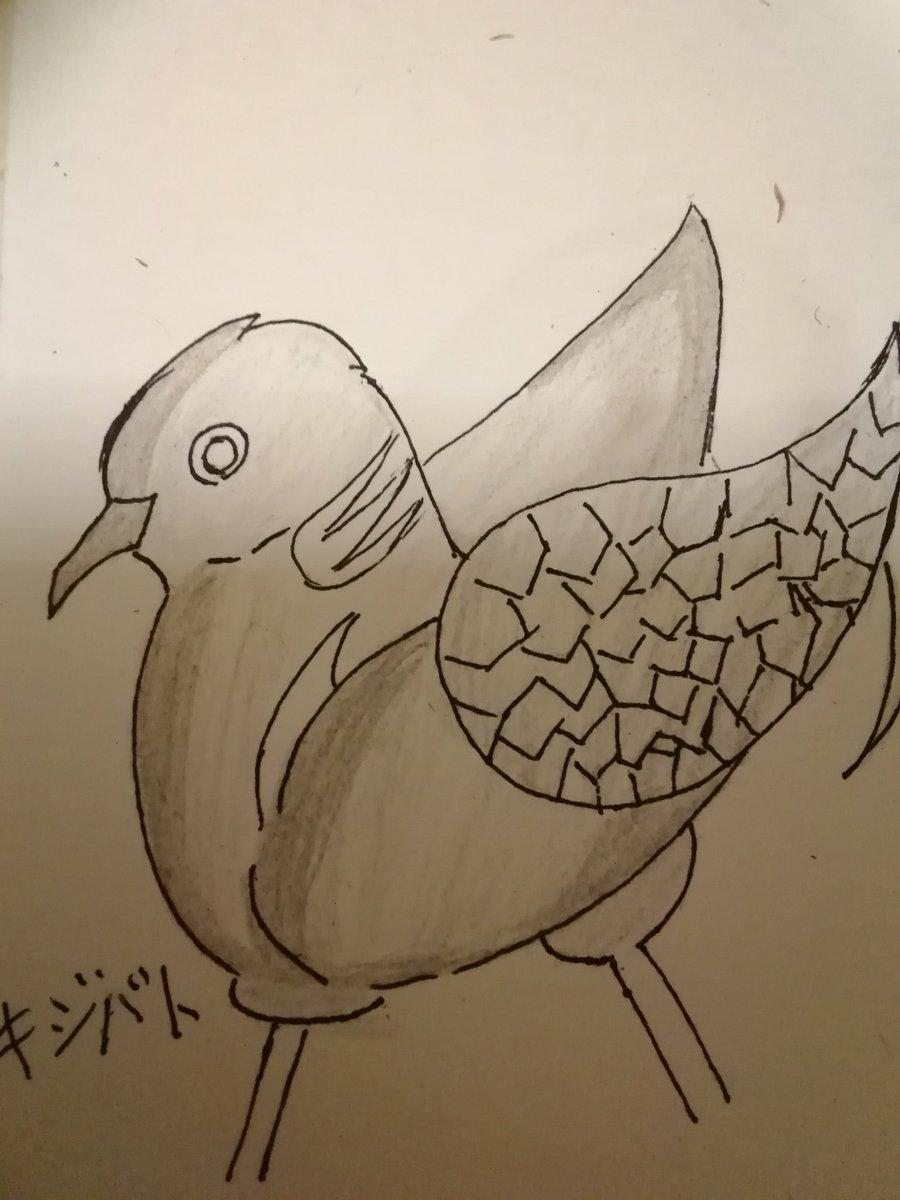 最近書いた絵だとこんなのがある#オリキャラ#sb69 #鳩
