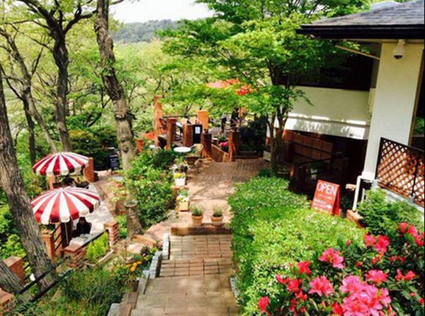 【Cafe terrace 樹ガーデン】@鎌倉「天空の城ラピュタ」みたいなカフェ✨マイナスイオンたっぷりで本当にくつろげ
