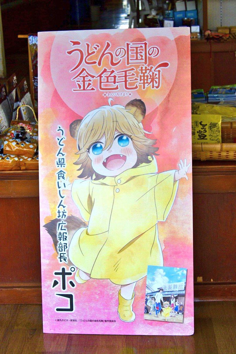 屋島山上のれいがん茶屋でうどんの国の金色毛鞠のポコを発見 (*゚∀゚*)ポコよ…うどん県 食いしん坊広報部長の役職を与え