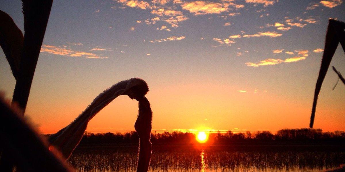 Exploring Michigan's Wetland Wonders