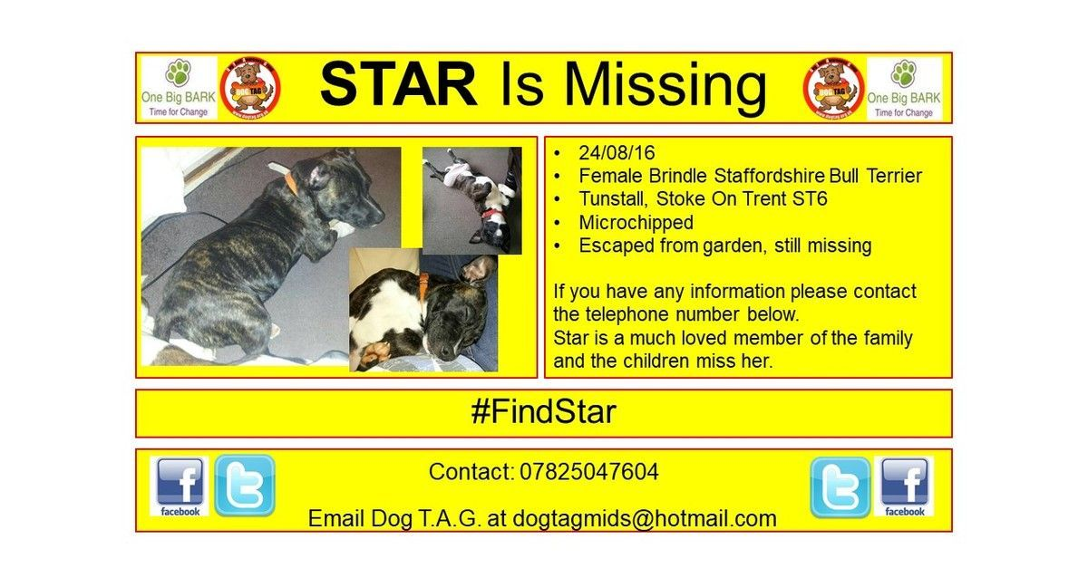RT @DogTAGMids: #FindStar #thunderclap #lostdogalert 24/08 https://t.co/fPqxhUIGq3 https://t.co/axynoBlNRR