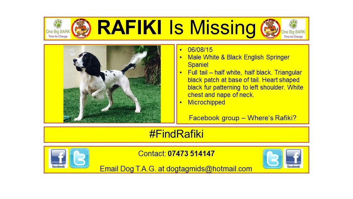 RT @DogTAGMids: #FindRafiki WHERE ARE YOU? Time to come home #LostDogAlert https://t.co/whYhOe4SWi