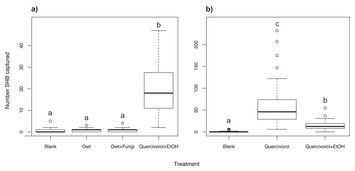 test Twitter Media - Quercivorol as a lure for the polyphagous and Kuroshio shot hole borers, vectors of Fusarium dieback https://t.co/8mp8f0g4XI https://t.co/UFNYGp64aU