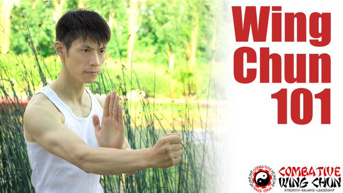 Free WingChun Sil Lim Tao Course courses elearning freebies freebie