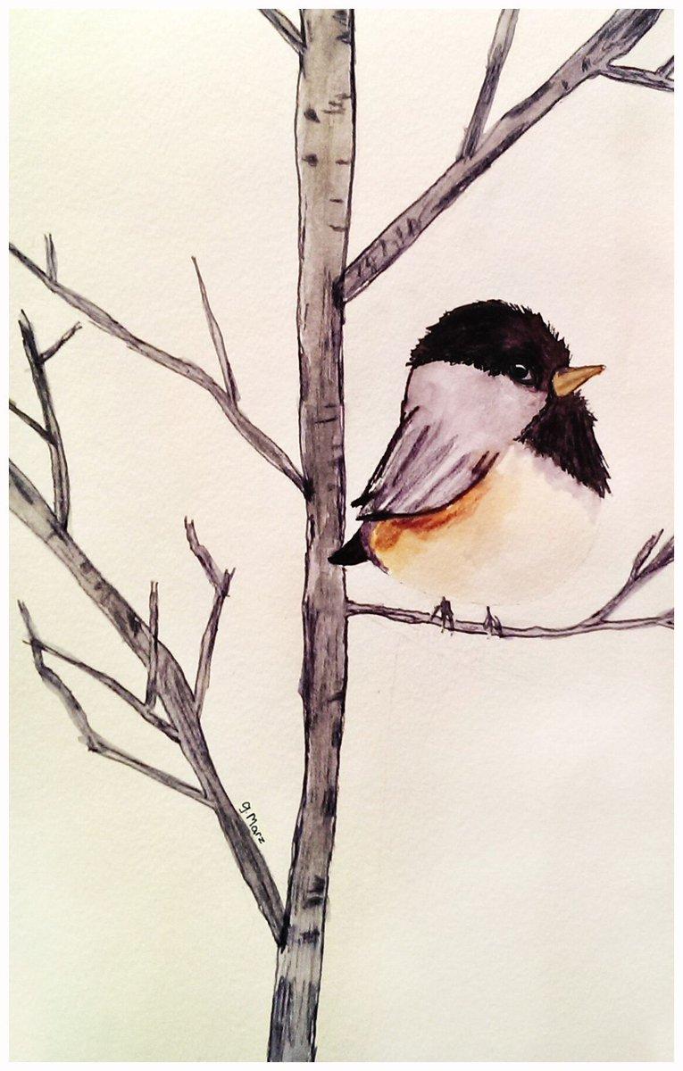 Pretty bird... pretty, pretty bird: https://t.co/Kj57chkneu https://t.co/T0etmvUip0