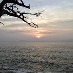 オハ(o^^o)皆様に感謝です(*☻-☻*)8/22朝Live  久々の太陽(^^)         トトロ仙人