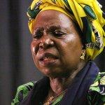 Expect resistance to radical economic transformation - Dlamini-Zuma