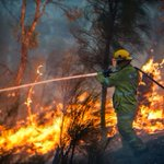 Bushfire outlook: Warm, dry winter ratchets up threat level ahead of summer fire season