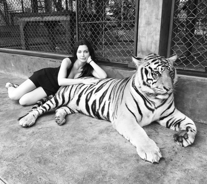 My favourite animal https://t.co/WRhHp1Suru