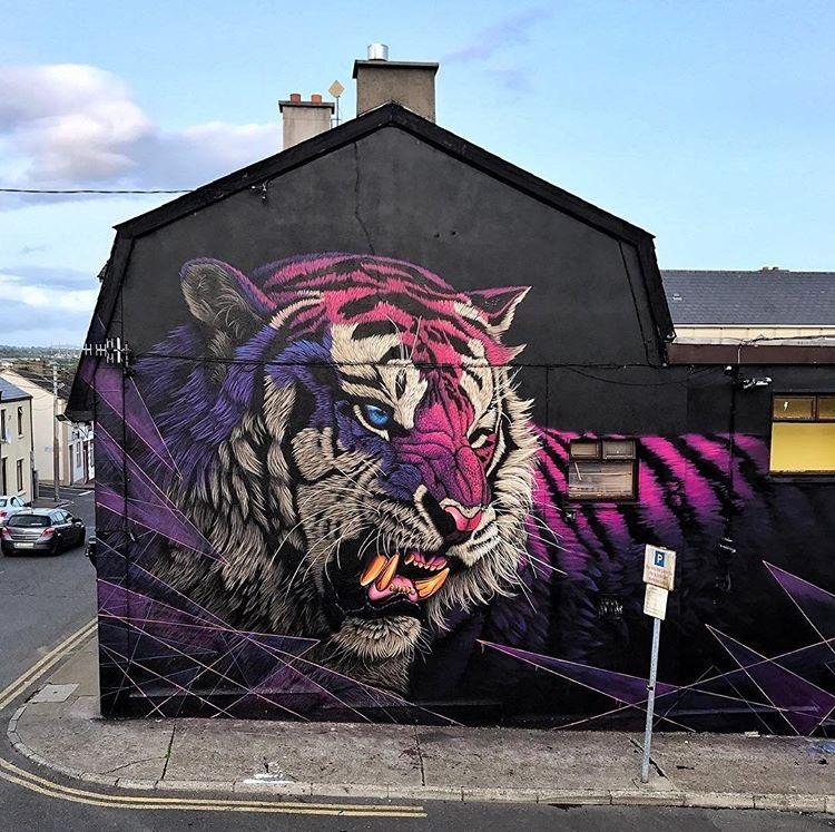 New Street Art by SonnySunDancer for @WaterfordWalls in Ireland 🇮🇪   #streetart #art #arte https://t.co/Oiz3tEtMsy