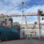 Smooth sailing for Port of Tauranga shareholders