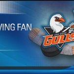 Gulls Hockey: San Diego's new hot ticket is the coolest game around