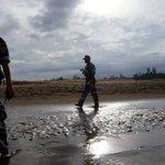 Rohingya Muslims fleeing Myanmar violence stranded on Bangladesh border
