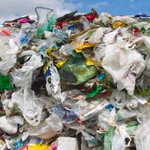 Greens vow ''cash for trash'' refunds in environmental policy