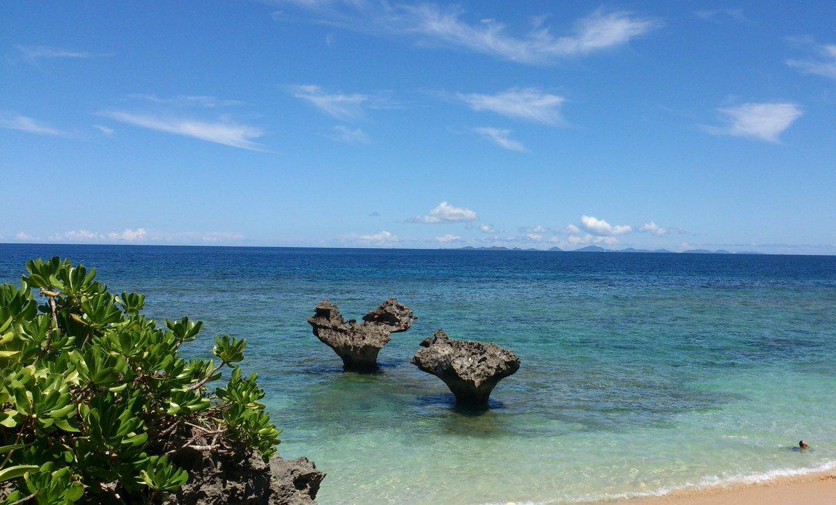 沖縄とうさかめ