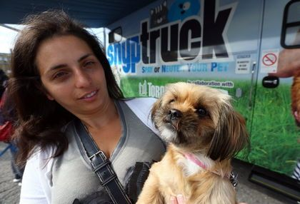 Mobile vet clinic curbs cat and dog population