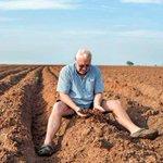 Hardy Zimbabwean farmers take on Nigeria's challenges
