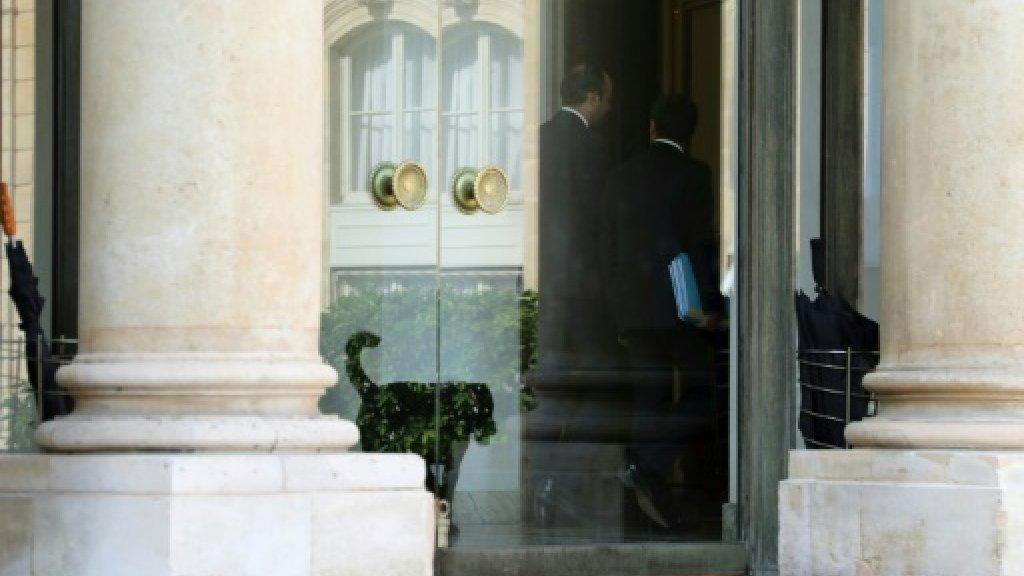 France gets First Dog: Macron adopts labrador mix Nemo