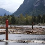 US delays final duties on Canadian lumber to buy time for settlement