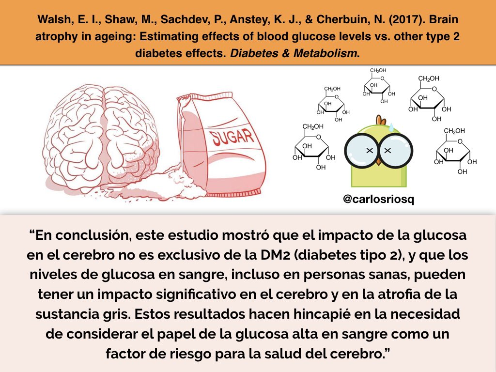 test Twitter Media - RT @nutri_rivers: Los picos de glucosa en sangre dañan al cerebro. https://t.co/eD72xiKzm0 https://t.co/dnJIbzvNhH