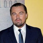 How Leonardo DiCaprio Unexpectedly Influenced