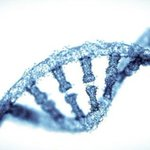 First cancer gene therapy gets US go-ahead