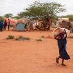 US gives a further S$124m in food aid to drought-hit Ethiopia
