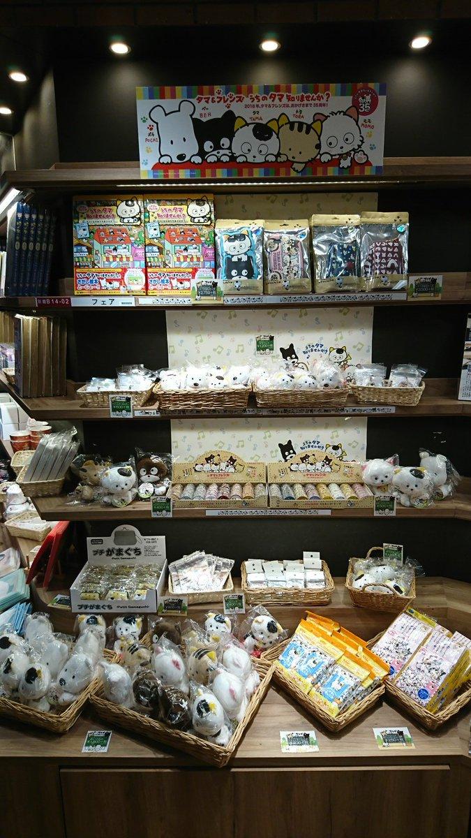 【9/1(金)~9/18(月)】三省堂書店池袋本店にて『タマ&フレンズ~うちのタマ知りませんか?~』フェア開催!来年で3