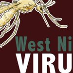 First SC West Nile Virus death reported in Anderson Co