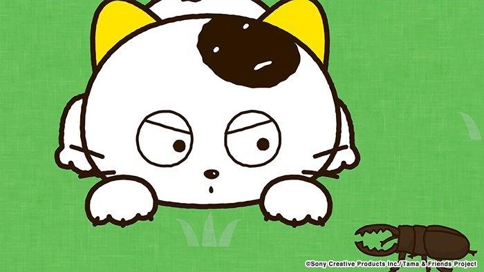 アニメ タマ&フレンズ~うちのタマ知りませんか?~ 今日のお話は「タマとクワガタ」公園で遊んでいるタマとポチの前に1匹の