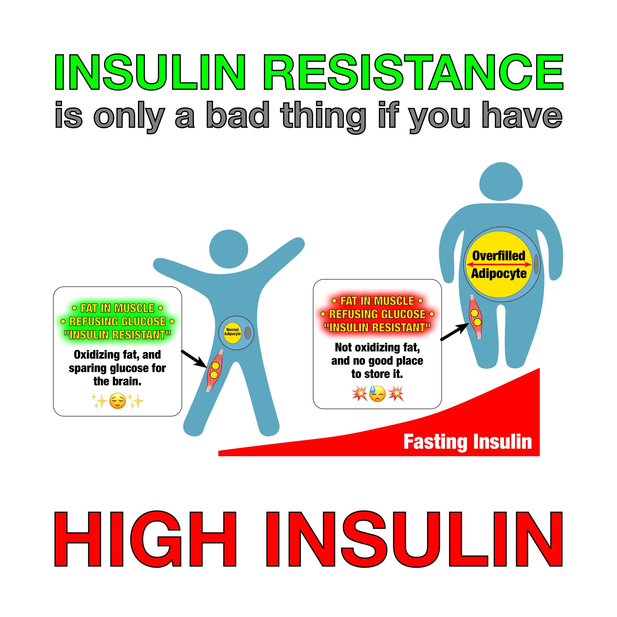 """Next time some clueless vegan says that eating saturated fat causes """"insulin resistance"""" you can just smile and share this. ☺︎  凸(¬◡¬)凸  ➘ https://t.co/7wYgmj1uPj"""