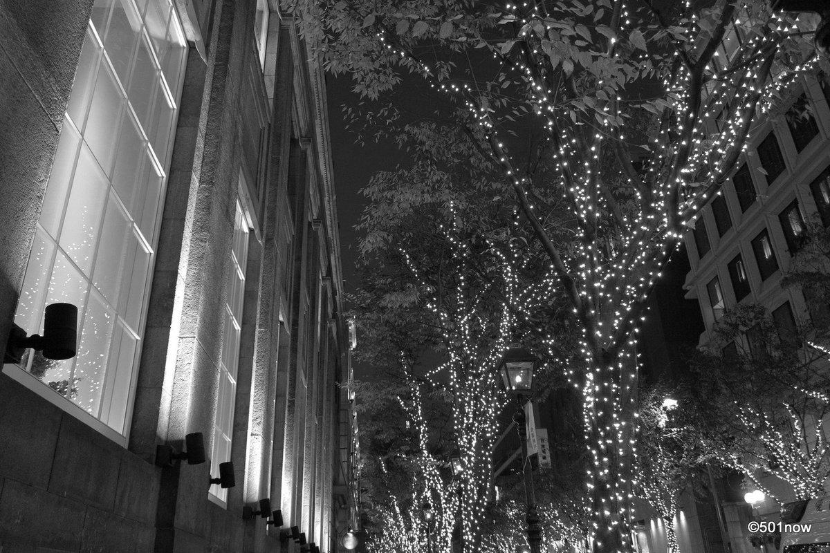 『夜の旧居留地 #6』#神戸 #旧居留地 #写真撮ってる人と繋がりたい#写真好きな人と繋がりたい#ファインダー越しの私の