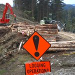 Economic snapshot has positives for Whanganui