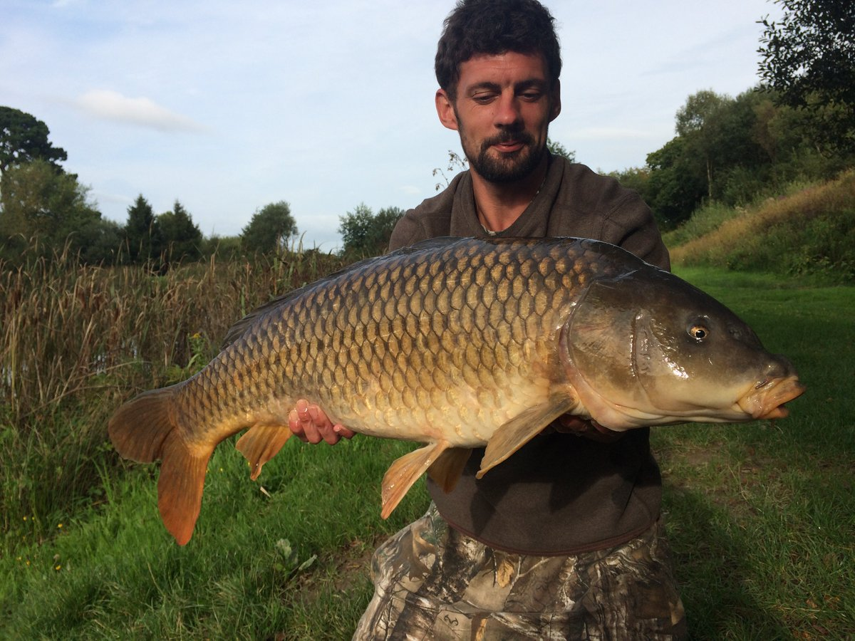 12TH '20' 8 YEARS IN A ROW!! Now that's CARPY!! #carpfishing #commoncarp https://t.co/oVf3mU5Hmn htt