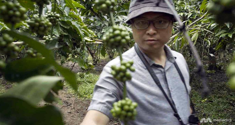 Singaporean turns coffee-grower, with zero experience but a grande ambition