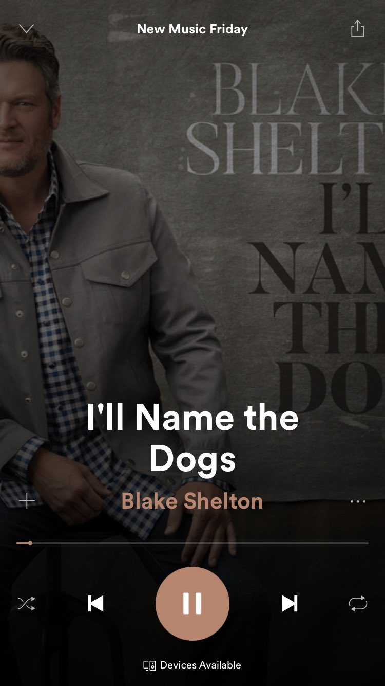 New tune is on #NewMusicFriday! #IllNameTheDogs @Spotify https://t.co/nYj6ZcVfGc